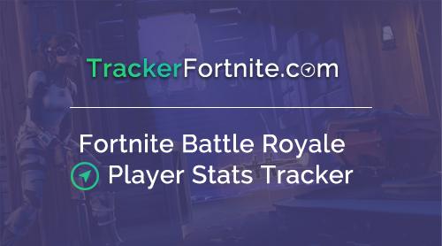 Fortnite Stats Leaderboard Tracker